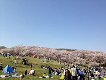 2_根岸森林公園.jpg