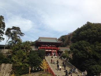 4_鶴岡八幡宮.jpg